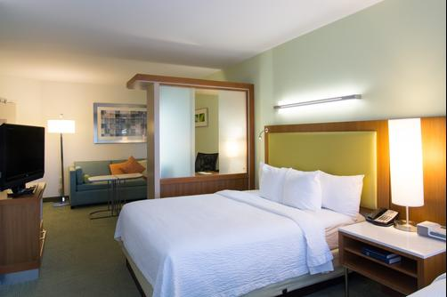 SpringHill Suites by Marriott Columbia Downtown The Vista - Columbia - King-Schlafzimmer